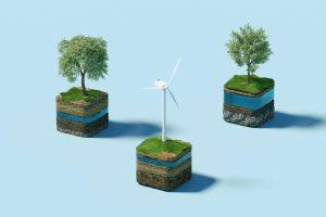 windmill trees sustainability